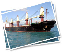 Coal Logistics, Container Logistics & Logistics Cost Analysis